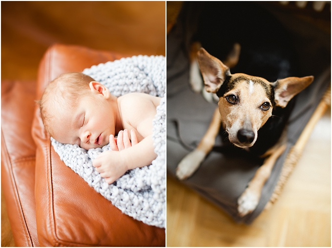 Babyfotografie-Ankewolten-Thom-Dresden-EinfachBaby(10)