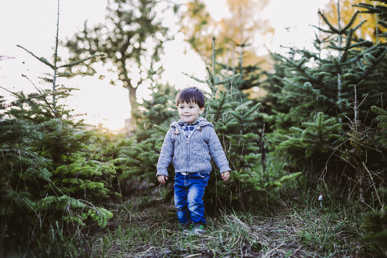 weihnachtsbaum-selbst-schlagen-12