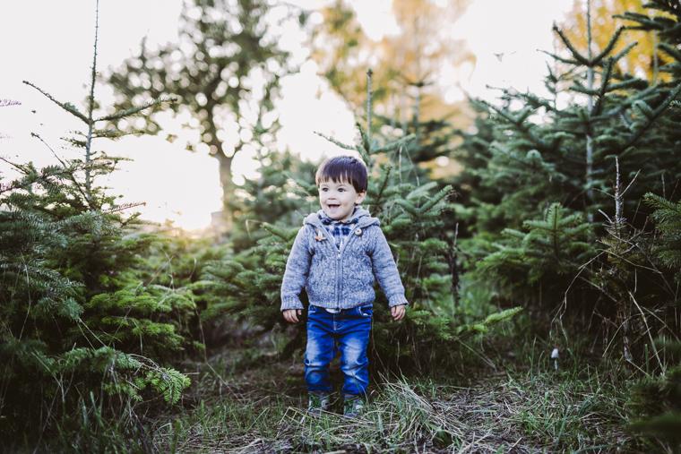 weihnachtsbaum-selbst-schlagen-13
