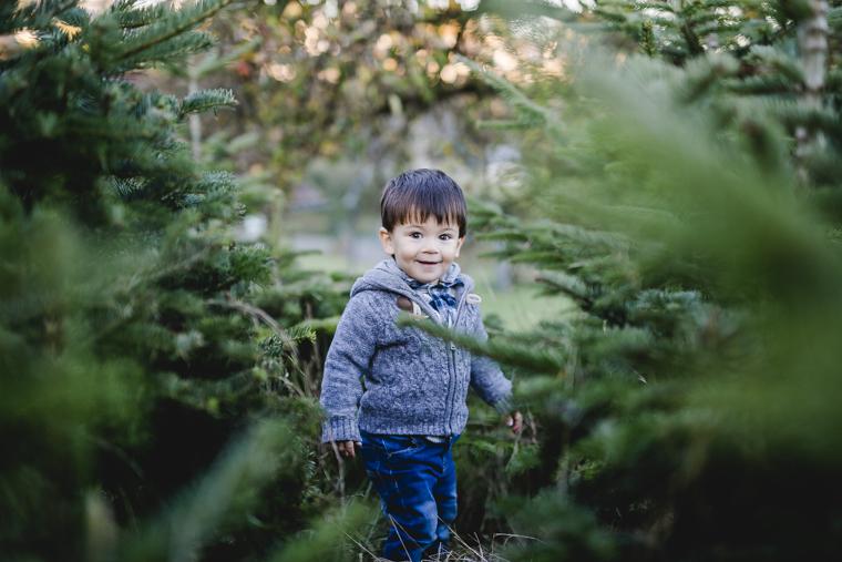 weihnachtsbaum-selbst-schlagen-14