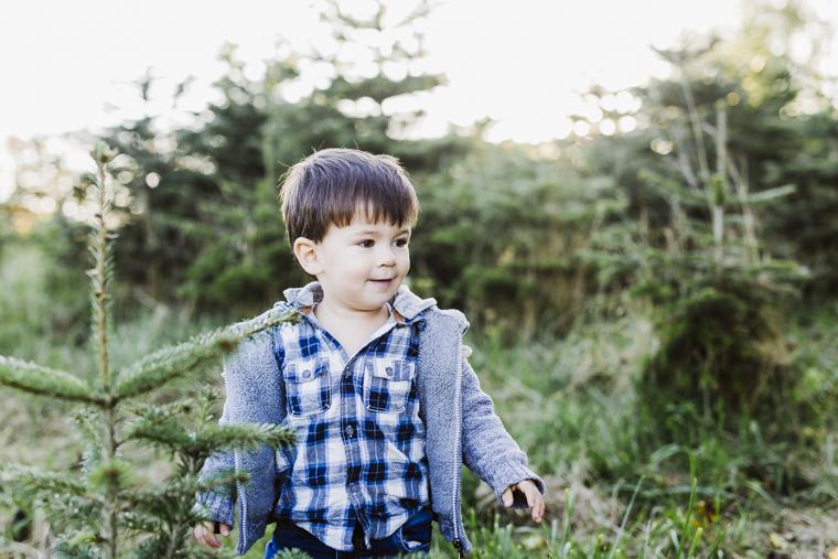 weihnachtsbaum-selbst-schlagen-5