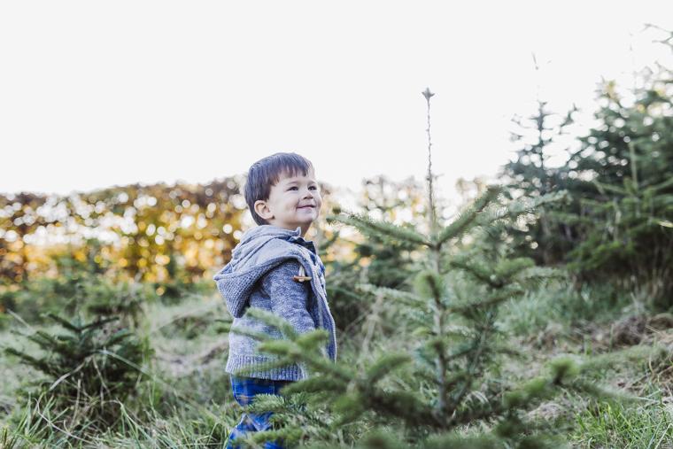 weihnachtsbaum-selbst-schlagen-6