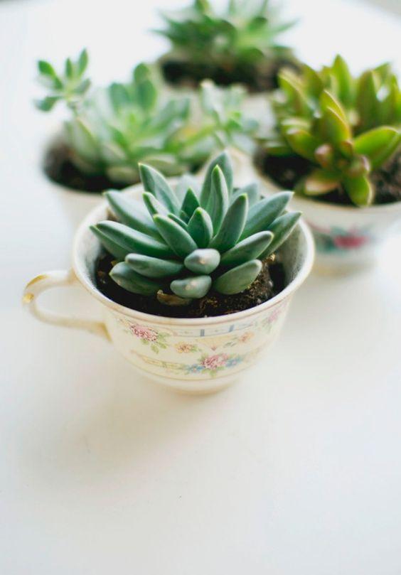 Pflanzen Muttertag