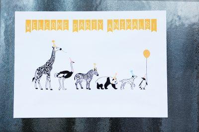 Kindergeburtstag Motto Zootiere